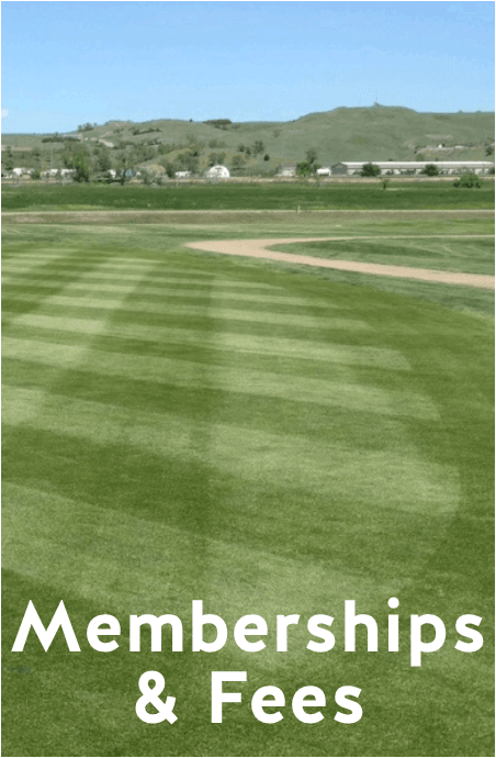 Membership and Fees